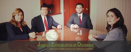 Our Work Team :: Jurídica Especialistas de Occidente